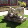 Čo so sochami v mestách
